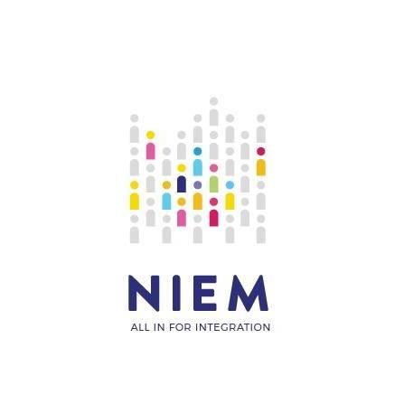 NIEM Evaluation I summary report